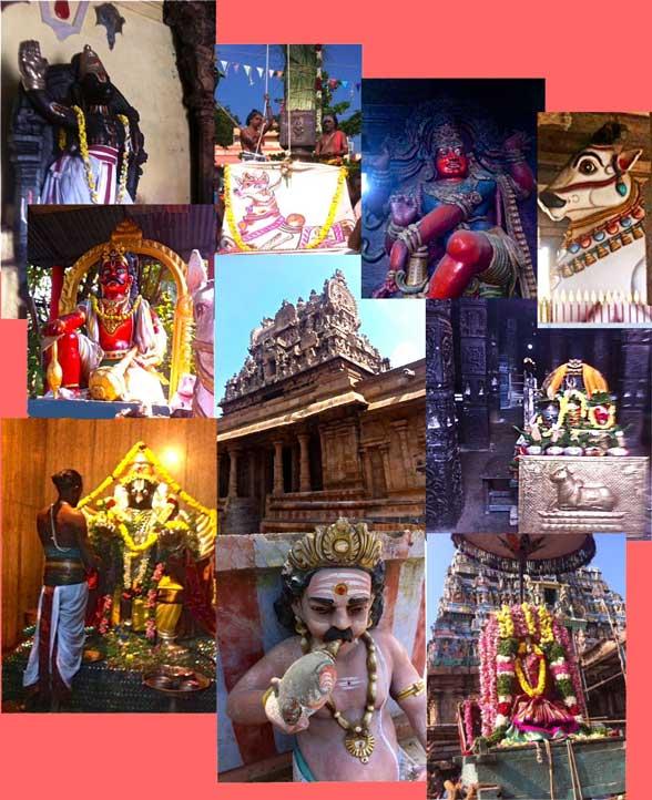 Tamil Nadu Temple Scenes